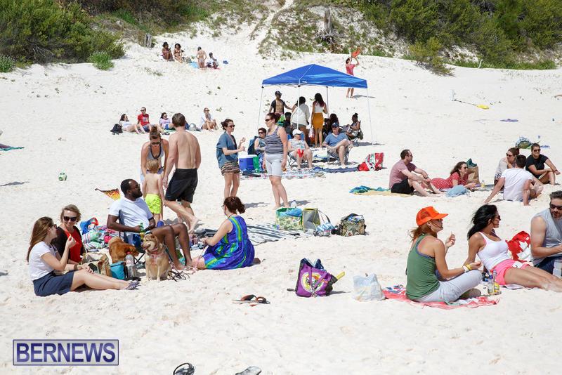 Horseshoe-Bay-Beach-Good-Friday-Bermuda-March-25-2016-65