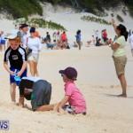Horseshoe Bay Beach Good Friday Bermuda, March 25 2016 (76)
