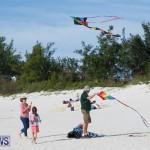 Horseshoe Bay Beach Good Friday Bermuda, March 25 2016 (8)