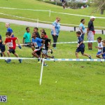 KPMG Round The Grounds Bermuda, March 20 2016-4