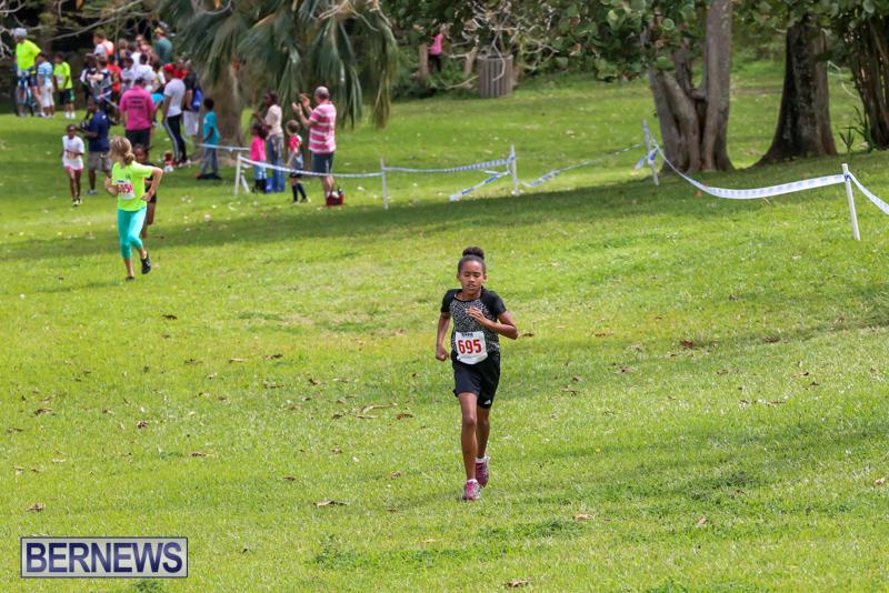 KPMG-Round-The-Grounds-Bermuda-March-20-2016-85
