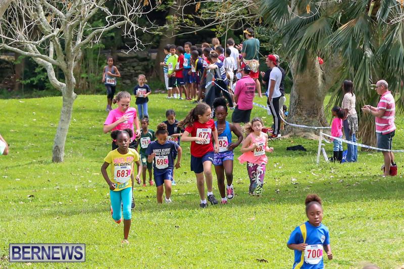 KPMG-Round-The-Grounds-Bermuda-March-20-2016-99