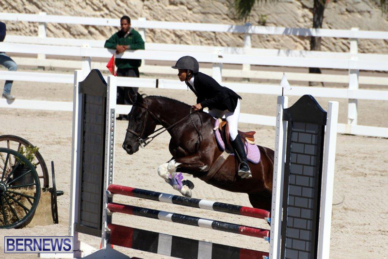 RES-Spring-Show-Bermuda-March-1-2016-17
