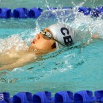 Schroders Spring Swimming Championships Meet Bermuda March 17 2016 (11)