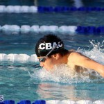 Schroders Spring Swimming Championships Meet Bermuda March 17 2016 (8)