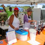 St. David's Cricket Club Good Friday Gilbert Lamb Day Bermuda, March 25 2016-18