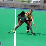 Women's Hockey Canaries Vs Budgies Bermuda March 17 2016 (15)