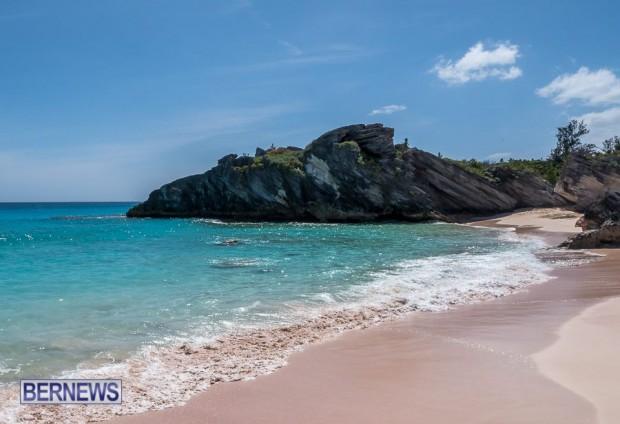 748 Pink Sand Bermuda Generic April 2016