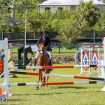 Ag Show Bermuda, April 14 2016-1