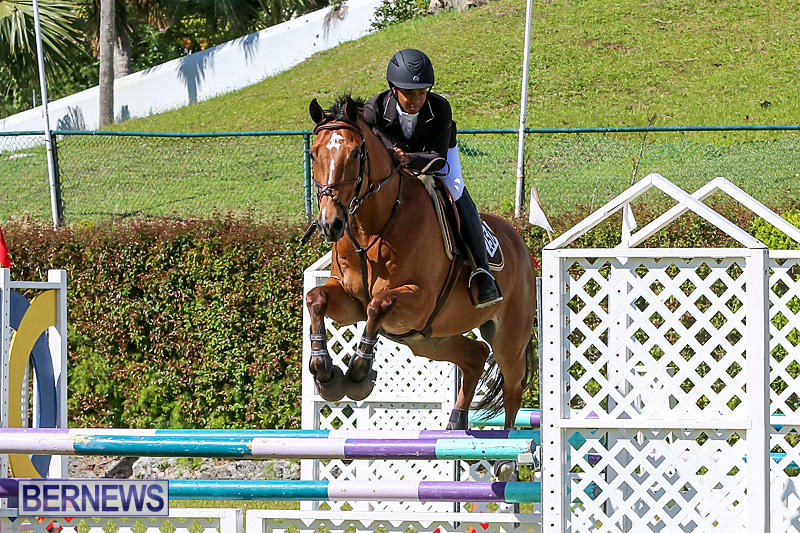 Ag-Show-Bermuda-April-14-2016-13