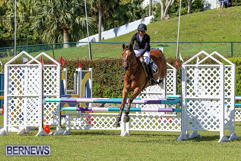 Ag-Show-Bermuda-April-14-2016-14
