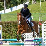 Ag Show Bermuda, April 14 2016-3
