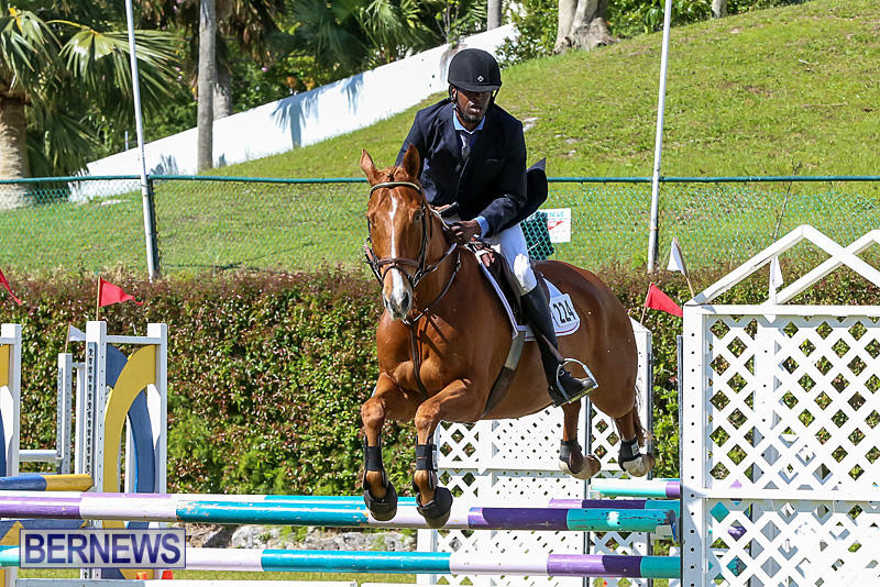 Ag-Show-Bermuda-April-14-2016-3