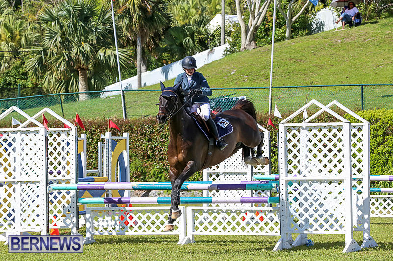 Ag-Show-Bermuda-April-14-2016-7