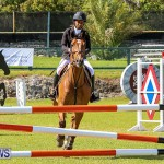 Ag Show Bermuda, April 14 2016-9