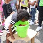 BIU 70th Anniversary Block Party Bermuda April 2016 (9)