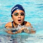 Bermuda 3rd Best Of Best 2016 Swim Meet April 26 2016 (16)