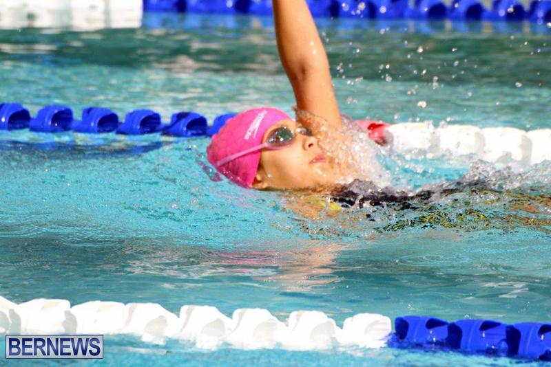 Bermuda-3rd-Best-Of-Best-2016-Swim-Meet-April-26-2016-17