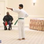 Bermuda Karate Open Championships April 26 2016 (1)