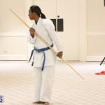 Bermuda Karate Open Championships April 26 2016 (13)
