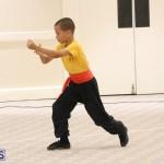 Bermuda Karate Open Championships April 26 2016 (15)