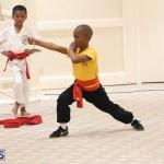 Bermuda Karate Open Championships April 26 2016 (18)