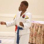 Bermuda Karate Open Championships April 26 2016 (19)