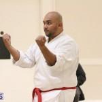 Bermuda Karate Open Championships April 26 2016 (3)