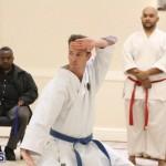 Bermuda Karate Open Championships April 26 2016 (5)
