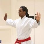 Bermuda Karate Open Championships April 26 2016 (9)