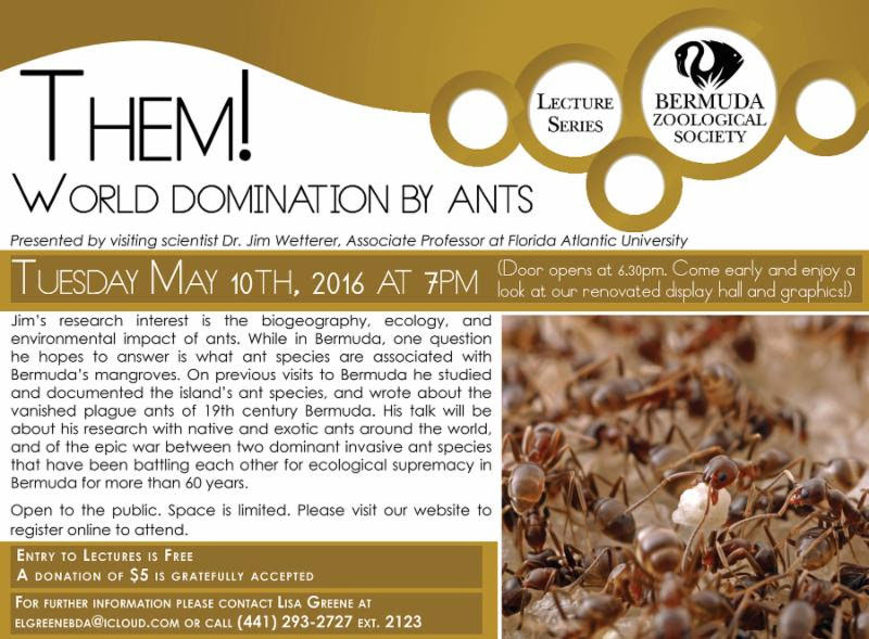 Them! World Domination By Ants