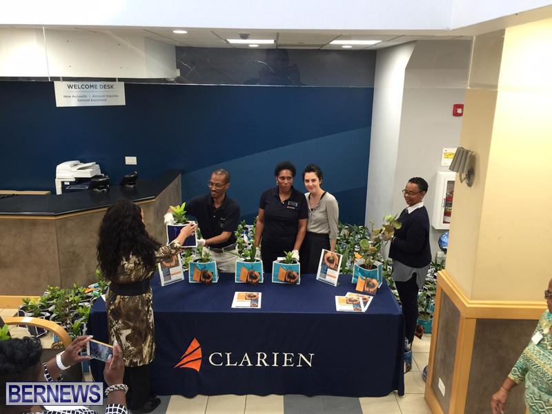 clarien sapling giveaway april 2016 (6)