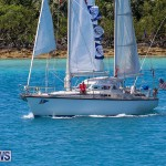 ARC Europe ARC USA Rally Bermuda, May 17 2016-100