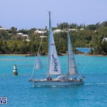 ARC Europe ARC USA Rally Bermuda, May 17 2016-103
