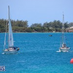 ARC Europe ARC USA Rally Bermuda, May 17 2016-110