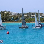 ARC Europe ARC USA Rally Bermuda, May 17 2016-134