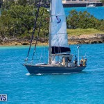 ARC Europe ARC USA Rally Bermuda, May 17 2016-138