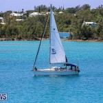 ARC Europe ARC USA Rally Bermuda, May 17 2016-146