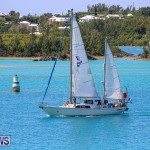 ARC Europe ARC USA Rally Bermuda, May 17 2016-150