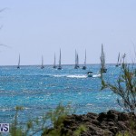 ARC Europe ARC USA Rally Bermuda, May 17 2016-155