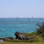 ARC Europe ARC USA Rally Bermuda, May 17 2016-159