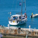 ARC Europe ARC USA Rally Bermuda, May 17 2016-21