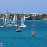 ARC Europe ARC USA Rally Bermuda, May 17 2016-32