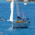 ARC Europe ARC USA Rally Bermuda, May 17 2016-66