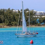 ARC Europe ARC USA Rally Bermuda, May 17 2016-68