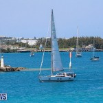 ARC Europe ARC USA Rally Bermuda, May 17 2016-83