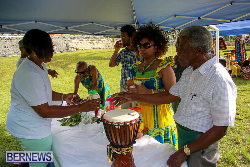 African-Rhythm-Black-Expo-Bermuda-May-21-2016-44