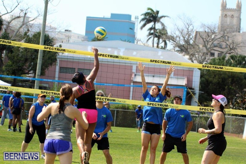 Bermuda-Corporate-Volleyball-Tournament-May-2016-4