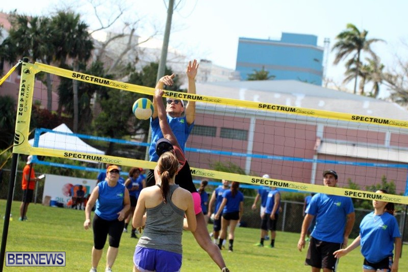 Bermuda-Corporate-Volleyball-Tournament-May-2016-5