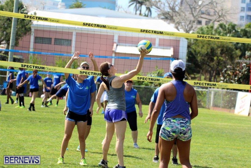 Bermuda-Corporate-Volleyball-Tournament-May-2016-7